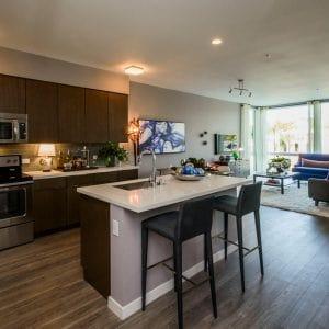 The Pierce - Kitchen/Living